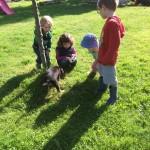 Spielen mit den Tieren